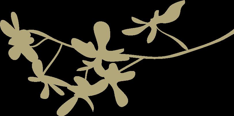 2018武汉大学日本校友会忘年会